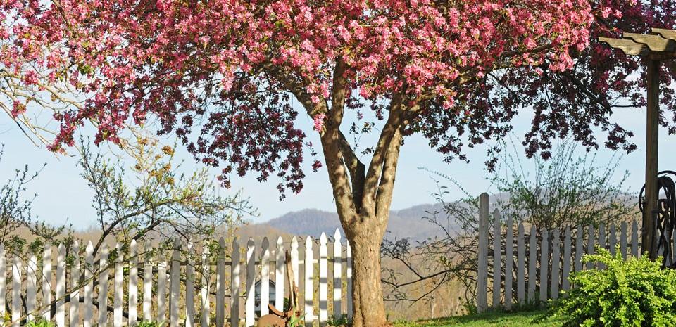 Garden-Entrance-Spring slider