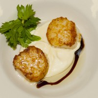 Broiled Scallops on Parsnip Puree with Truffle Oil and Balsalmic Glaze